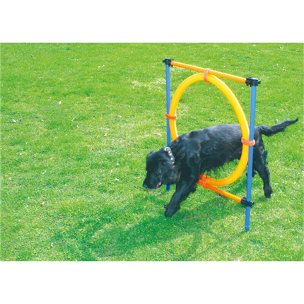 Pawise agility obroč - 55 cm