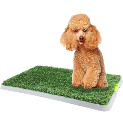 Pawise Green Trainer trava za učenje sobne čistoče - 43 x 67 cm