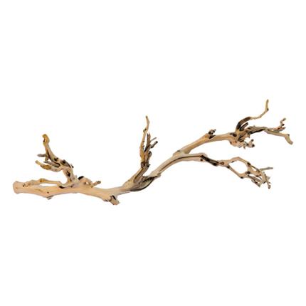Exo Terra gozdna veja, L - 60 cm