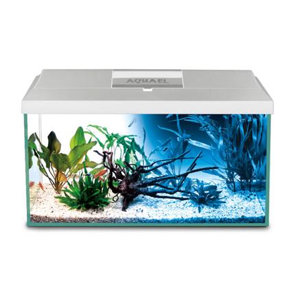 Aquael LED akvarijski set Leddy 60 Day/Night, bel - 60 x 30 x 30 cm