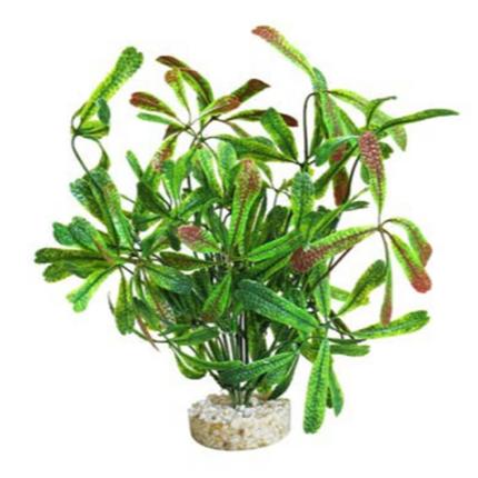 Sydeco dekor Stars Plant