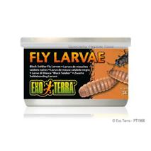 Exo Terra Fly Larvae ličinke muh - 34 g