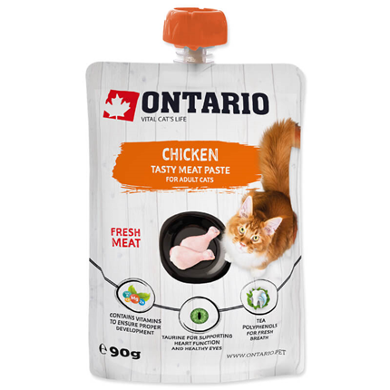 Ontario Cat pasta s piščancem