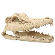 Repti Planet dekoracija lobanja krokodila - 13,8 x 6,8 x 6,5 cm