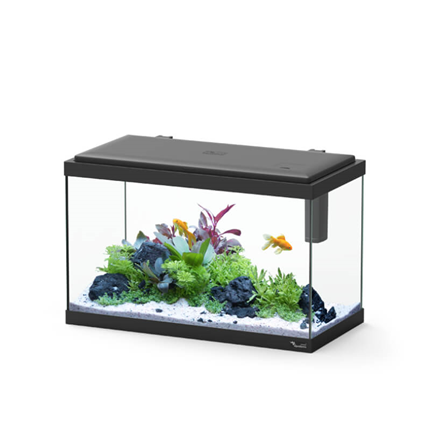 Aquatlantis akvarij Explorer Vienna LED, črn - 42L