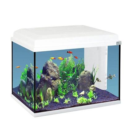 Aquatlantis akvarij Start 55 LED, bel - 57L