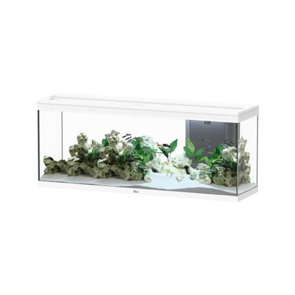 Aquatlantis akvarij Splendid 150 LED 2.0, bel sijaj - 364L