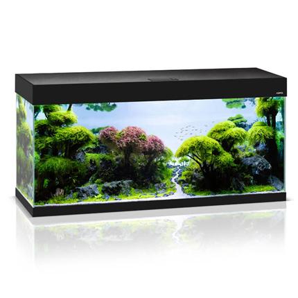 Aquael akvarij Optiset črn - 240L