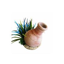 Sydeco dekor Whisky Jar Plants