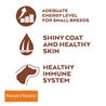 Nature's Variety Original No grain Dog Mini Adult - puran