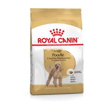 Royal Canin Koder - 1,5 kg
