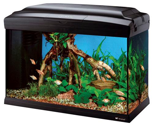 Akvarij Cayman 50 Professional - črn 40l