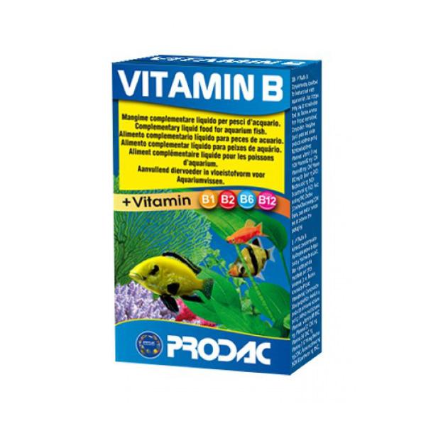 Prodac doatek vitamina-B - 20 g