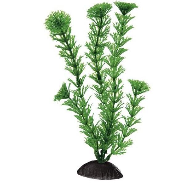 Ferplast svilena rastlina Gymnocor - 20 cm