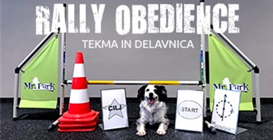 Rally obedience tekma in delavnica